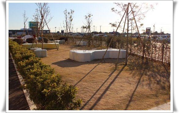 IMG_4462-20121212.jpg