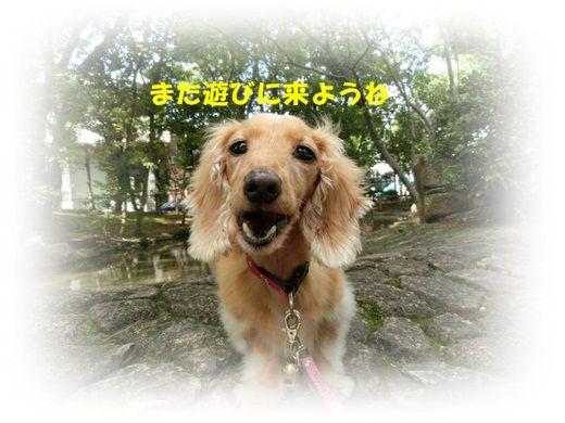 CIMG3748_20120928145032.jpg
