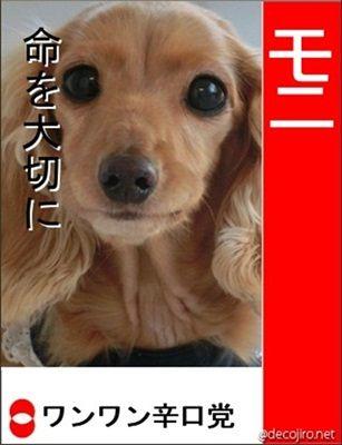 decojiro-20121204-110553-20121204-20121204.jpg