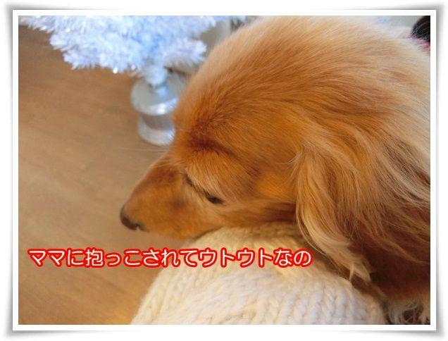 14_201411160857598fe.jpg