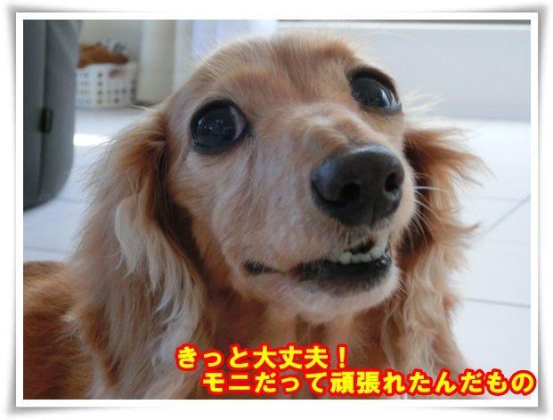 3_20131019211522730.jpg