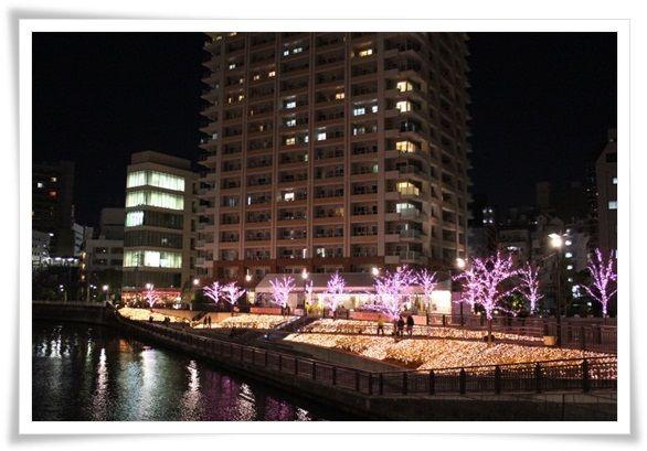 IMG_4644-20121217.jpg
