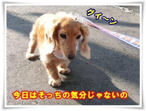 3_20130912102847eca.jpg