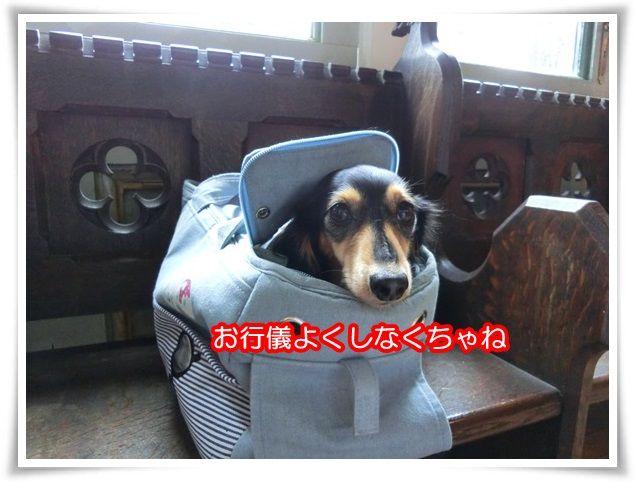 3_20151011220144481.jpg