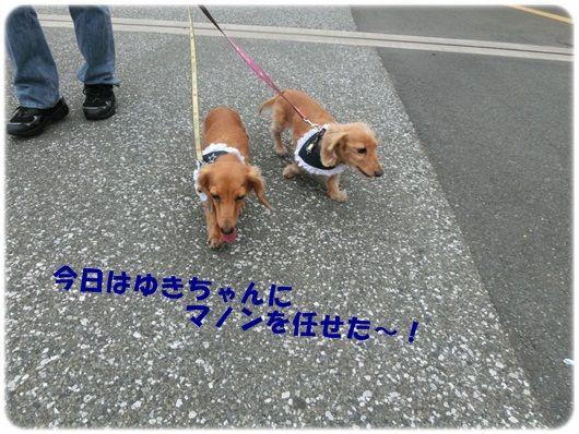 CIMG4597-20121015.jpg