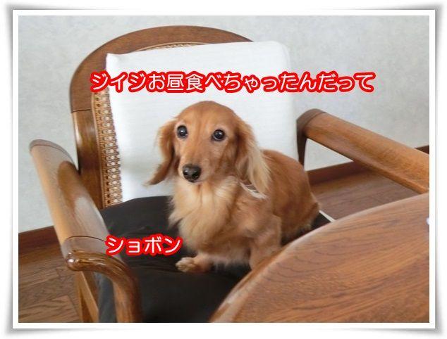 2_201503282153175a2.jpg