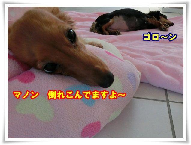 2_201312231027141b3.jpg