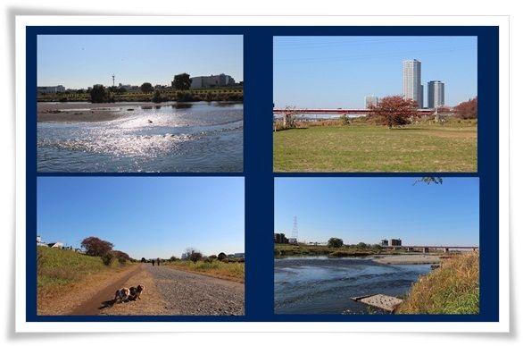 112-20121126.jpg