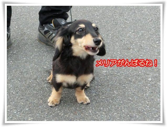1_20140706072143da5.jpg