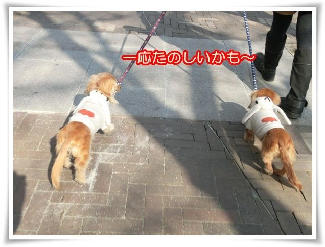 2_20140121181254c1f.jpg