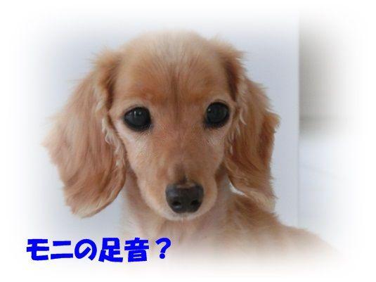 1_20130718220609.jpg