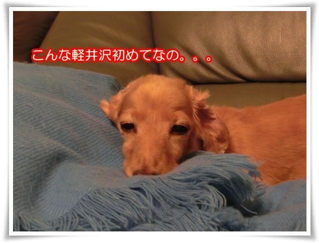 2_20140810220034d69.jpg