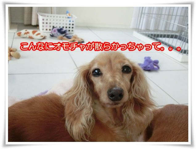 13_201405240819304a2.jpg
