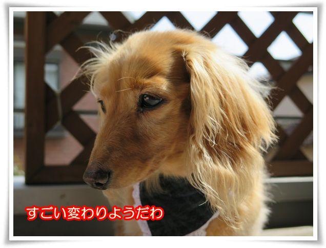 11_2014033010194510b.jpg