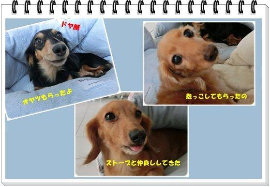 output32-20130204.jpg