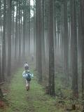 旧東熊野街道を歩きませんか?