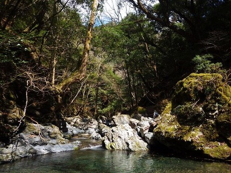 We hold forest tour of water source of 4/21 spring