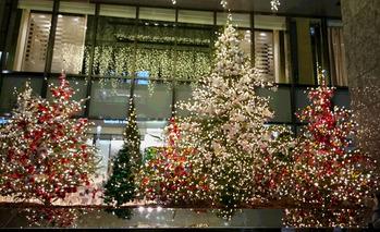 銀座 クリスマスツリー