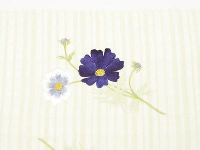 コスモスの花刺繍夏名古屋帯地 工芸キモノ野口 前柄