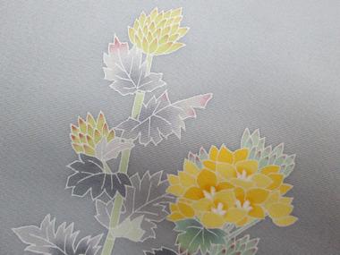 菜の花帯アップ