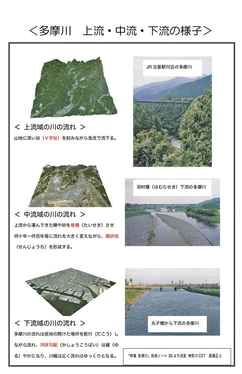 多摩川:上流・中流・下流の様子_edited-1