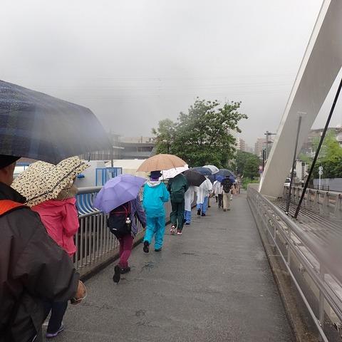 20150619鶴見川橋