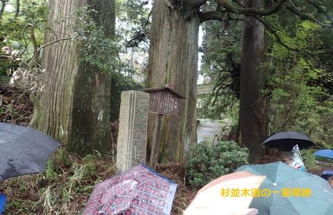 杉並木一里塚