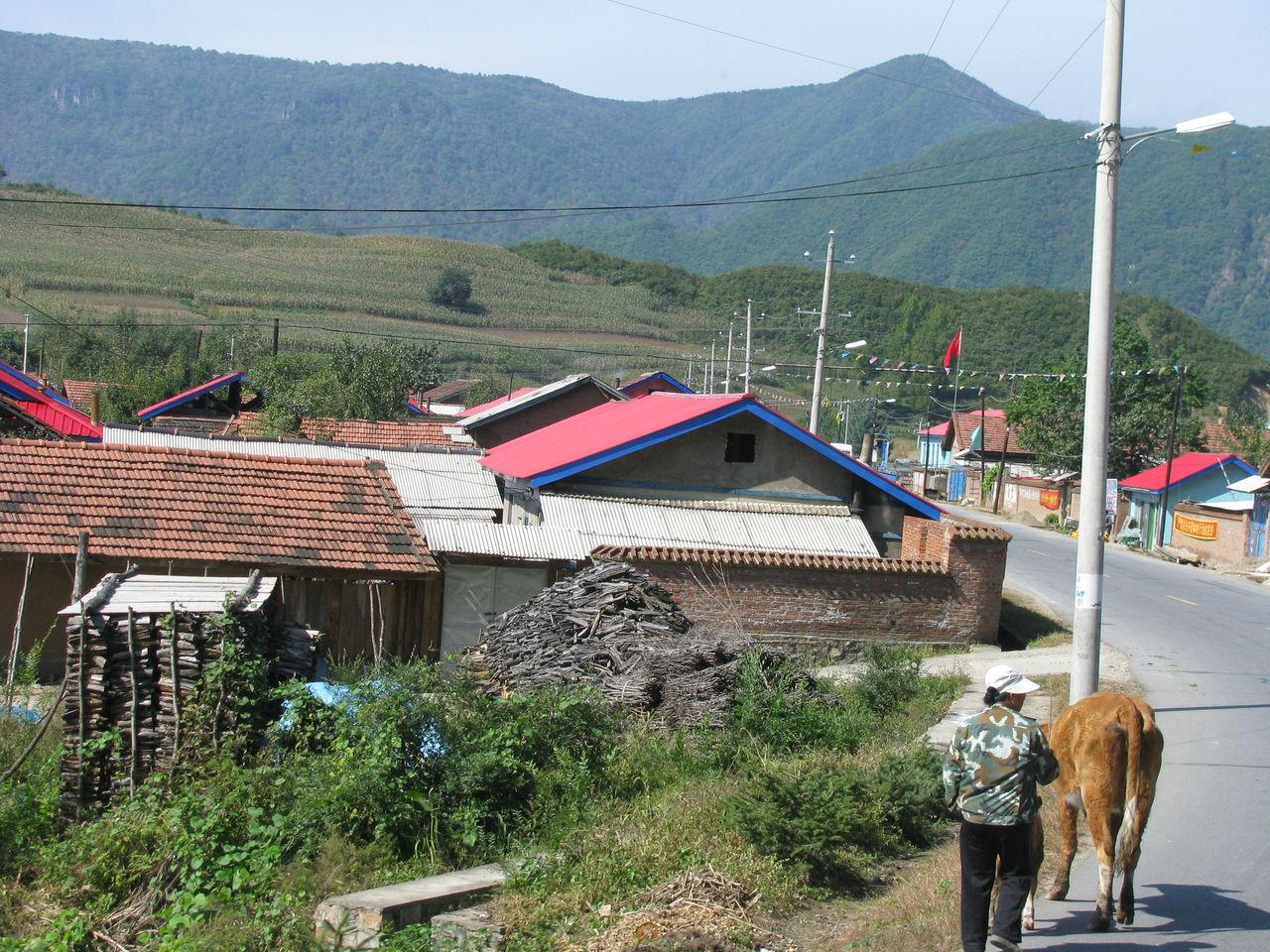 道ばたの景色 : 吉林省・臨江市...