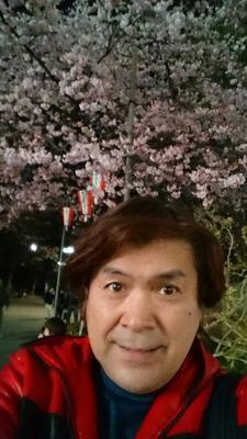 170321_桜開花7