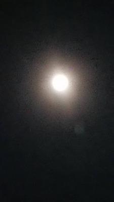 200408_ピンクムーン1