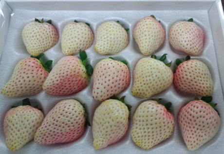 white_strawberry