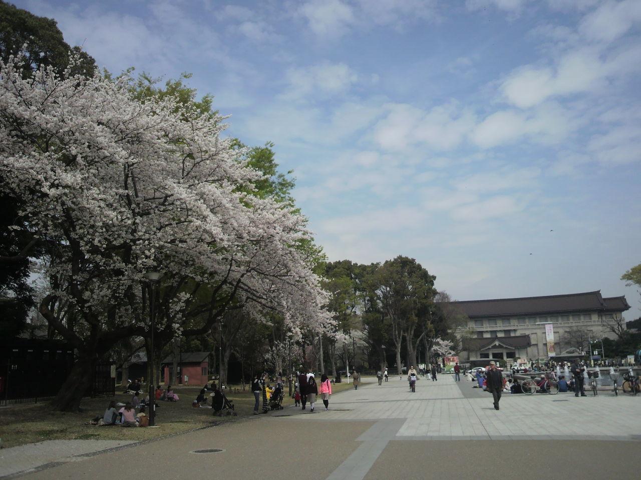 20130328上野19