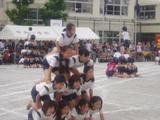 20090523中丸運動会4