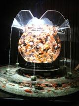 20120826アートアクアリウム金魚展23