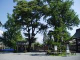 阿蘇神社220070817