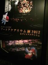 20120826アートアクアリウム金魚展3