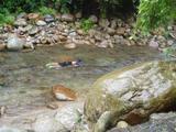 20080812湯山9