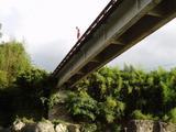 20080815川辺川12