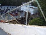 20100322鶴岡八幡宮8銀杏