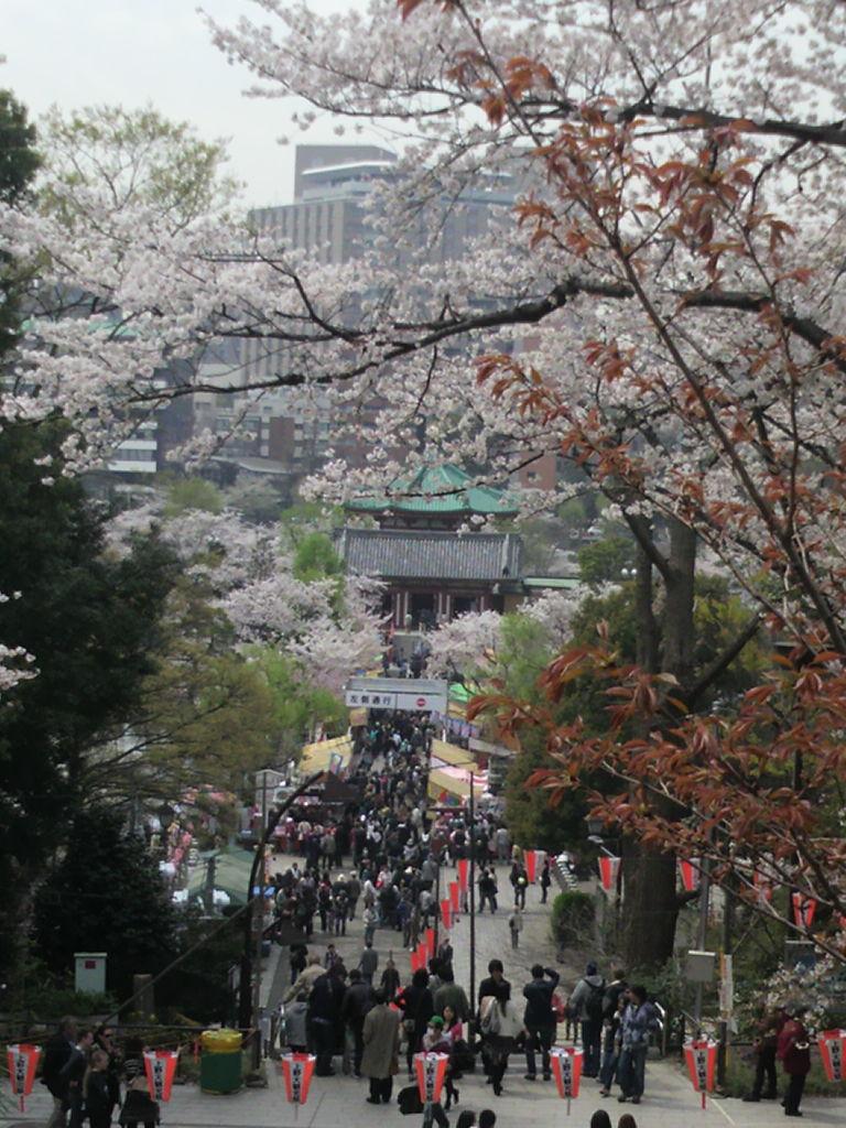 20130328上野6