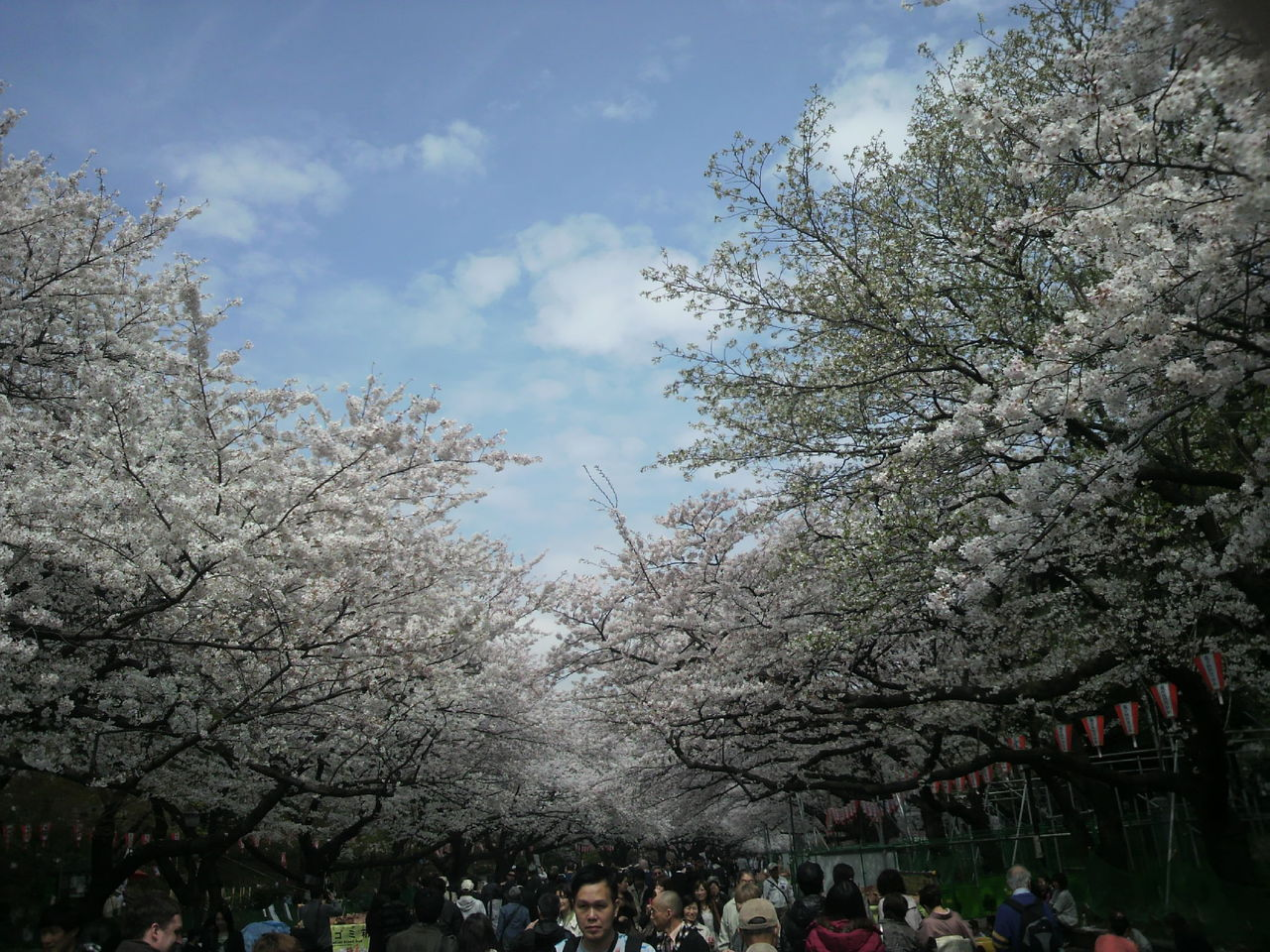 20130328上野13