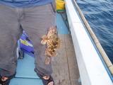 20090810芦北釣り12アラカブ