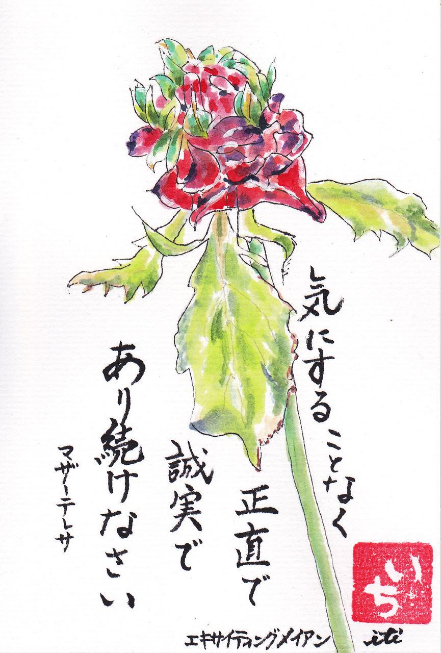 イメージ 16