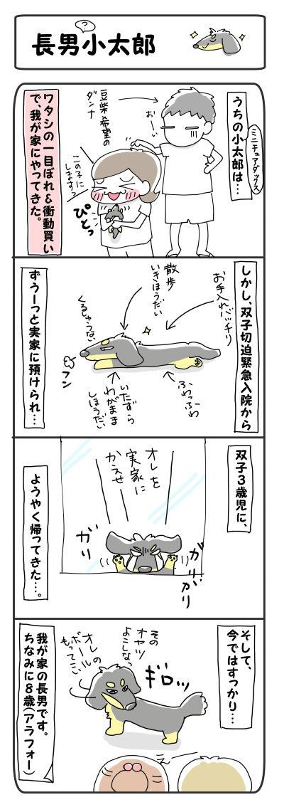 長男?小太郎【4コマ】