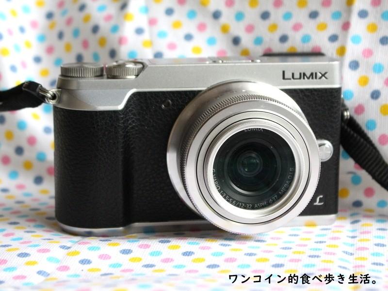 LUMIX GX7mk2(お散歩カメラ)
