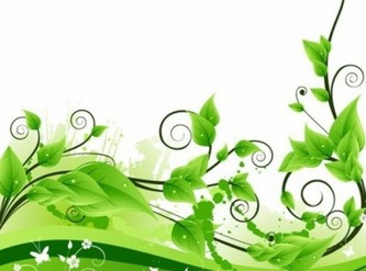 swirl-plant-decoration-on-white-background_293-187