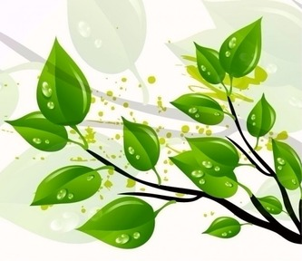 abstract-green-leaves-vector-illustration_53-8635