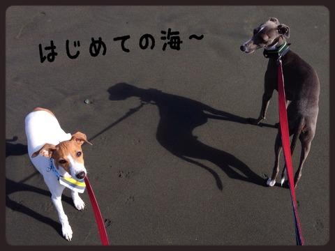 2014-10-04-00-03-28