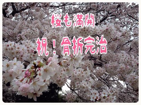 2015-04-01-20-05-18