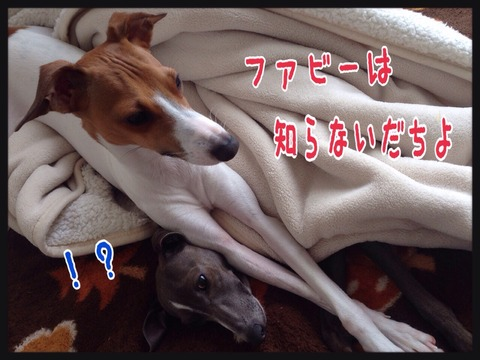 2015-04-29-20-09-04